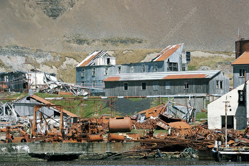 Leith whaling station, South Georgia