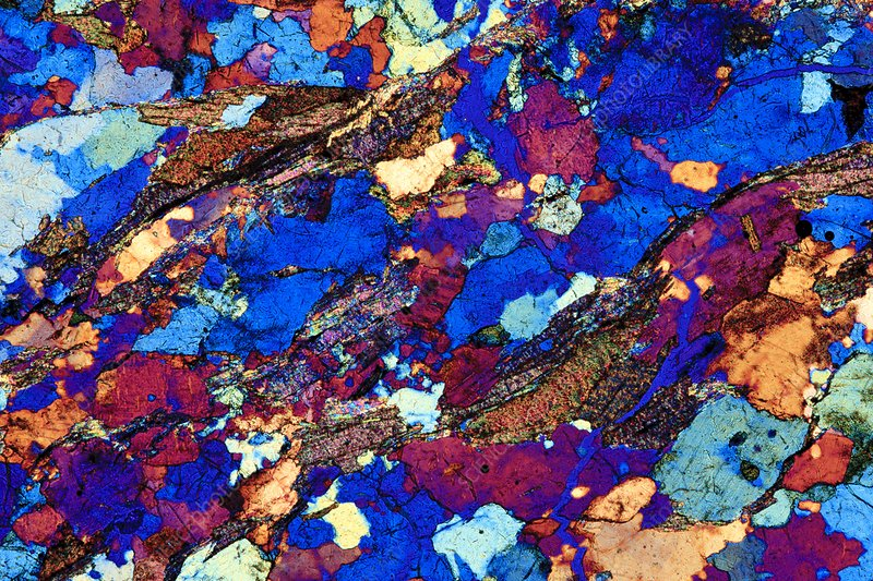 Gneiss, thin section, polarised LM
