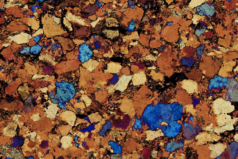 Sandstone, thin section, polarized LM