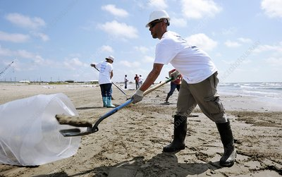 Gulf of Mexico oil spill clean-up, 2010