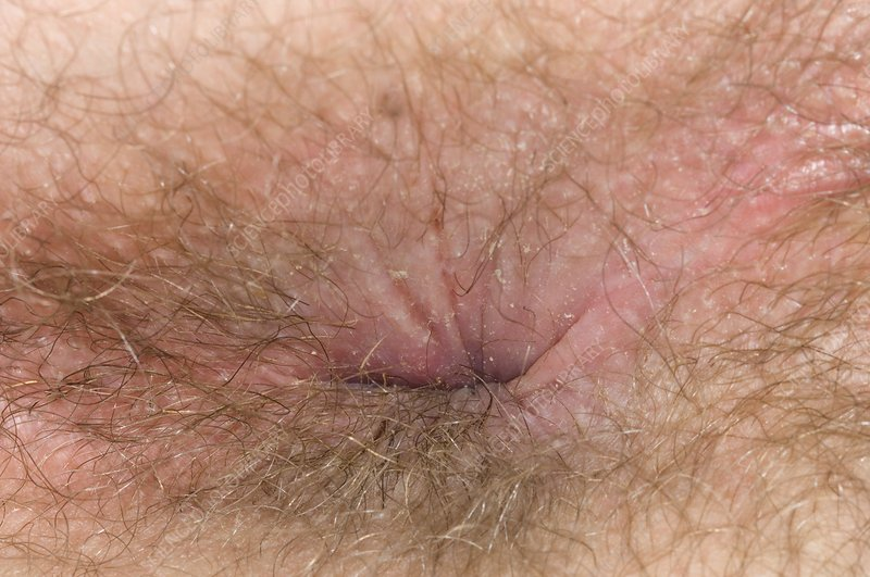 sex neked couple photo