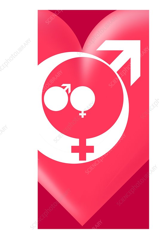 Family gender and love symbols