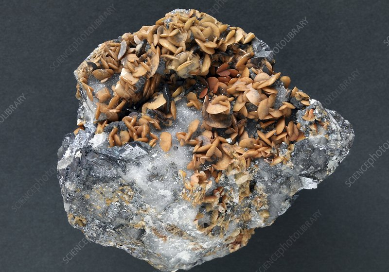 Siderite mineral - Stock Image C007/4177 - Science Photo Library