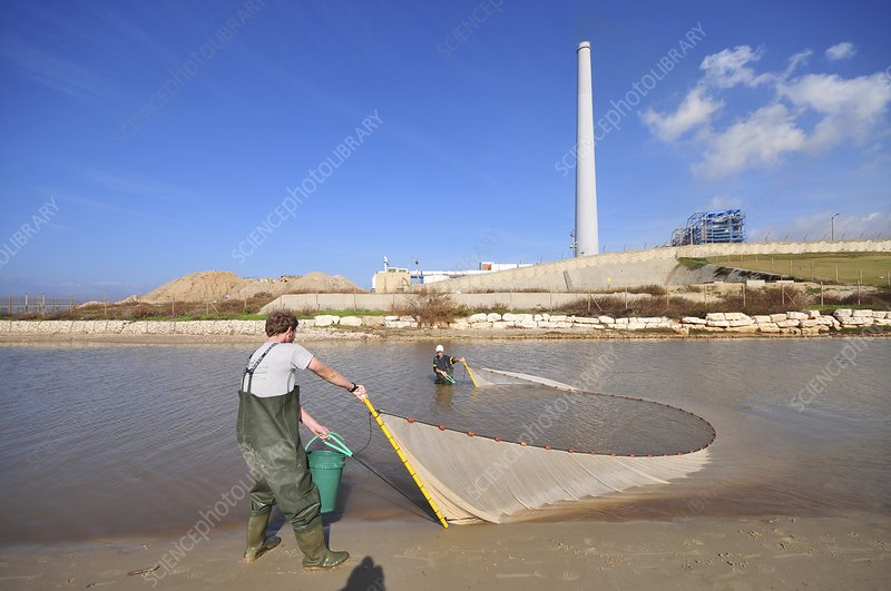 Fishing at the outlet of the Hadera River