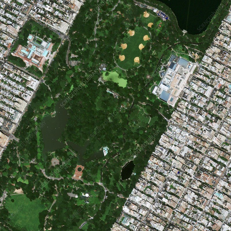 Central Park museums, satellite image
