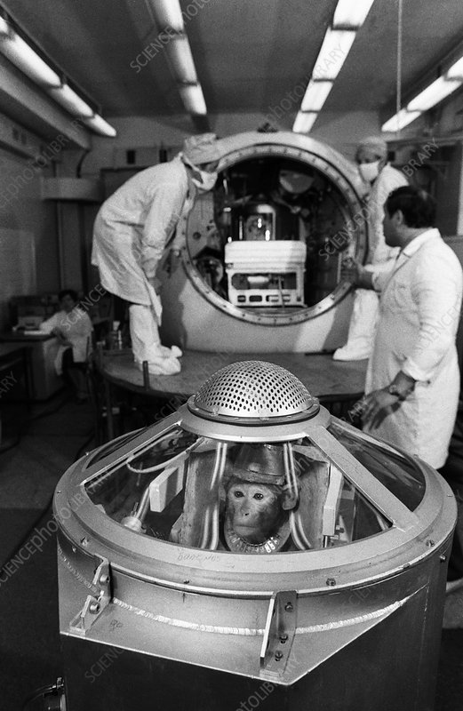 Preparation of the Bion-7 capsule