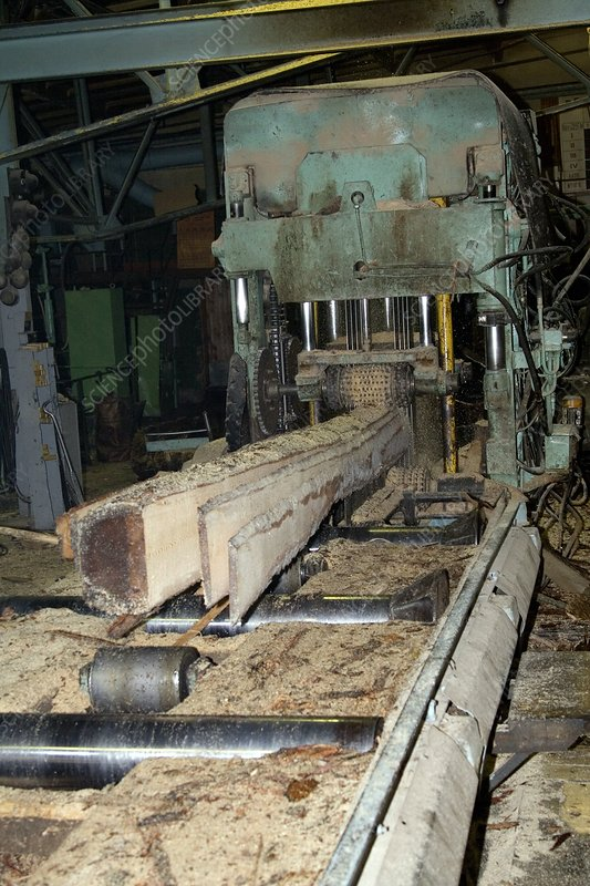 Boards being cut at a sawmill
