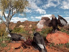 Pleistocene black vultures, artwork