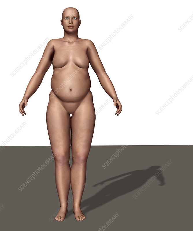 Endomorphic Body Type