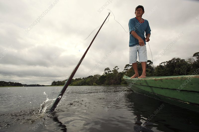 Throwing a fishing spear, Amazonia