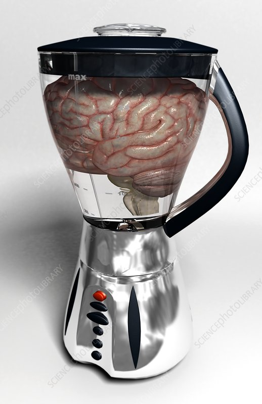Brain in blender