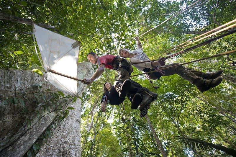 Rainforest educational mission