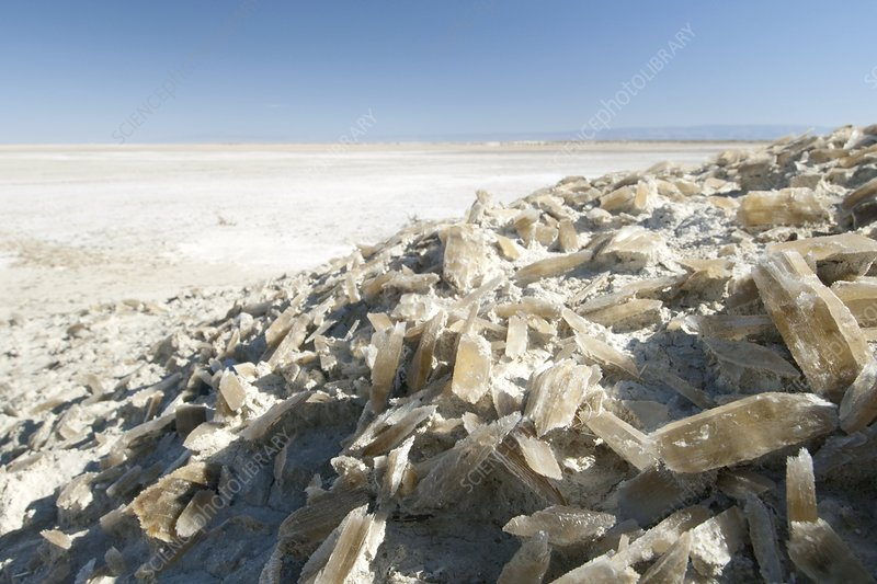 Selenite crystals on a dried lake bed