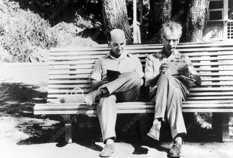 Lifshitz and Landau, Soviet physicists