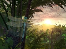 Prehistoric dragonfly, artwork