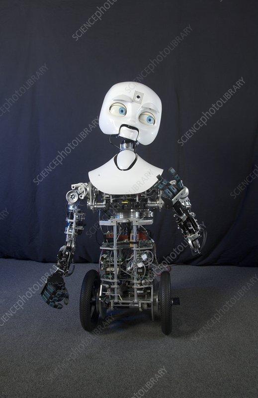 Humanoid social robot