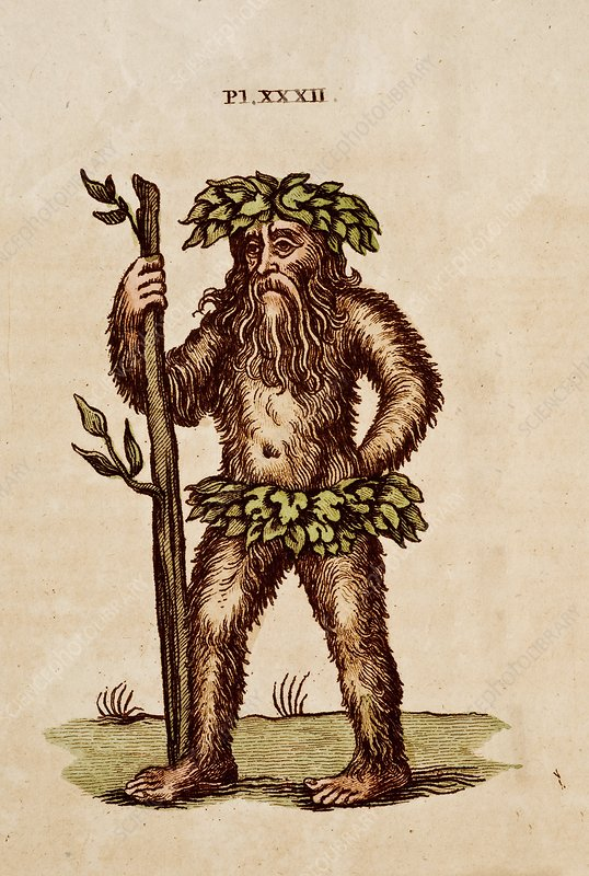 A wild man of the woods