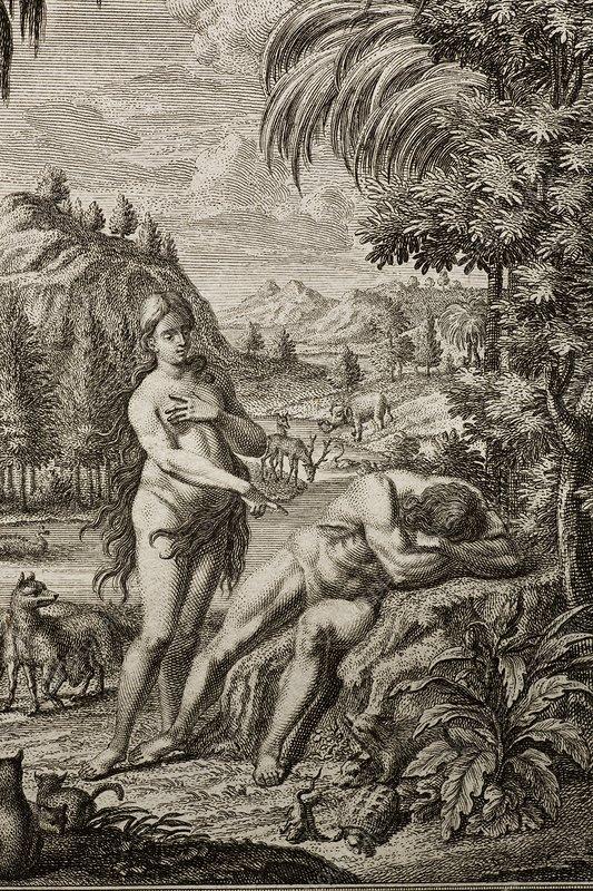 1731 Scheuchzer Creation Adam's Rib & Eve