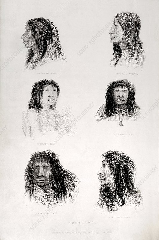 Fuegian tribes - Fitzroy's Beagle Portrt.