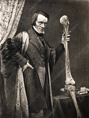 1846 Richard Owen and Moa leg fossil