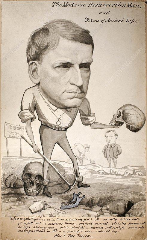 1880 George Rolleston zoologist cartoon
