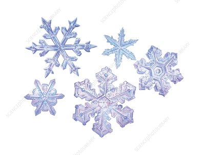 Snowflakes, artwork