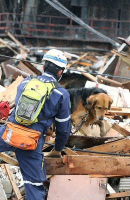 Rescue workers, Japan earthquake 2011