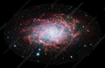 Triangulum galaxy (M33), infrared image