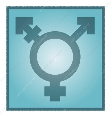 Transgender symbol, artwork