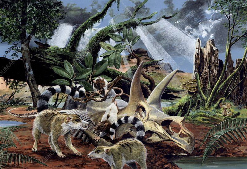 Life after the dinosaurs, artwork