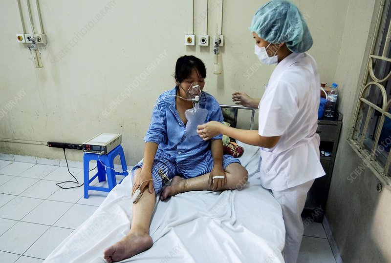 Bird flu infection, Vietnam
