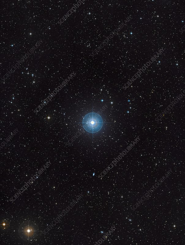 Beta Pictoris star