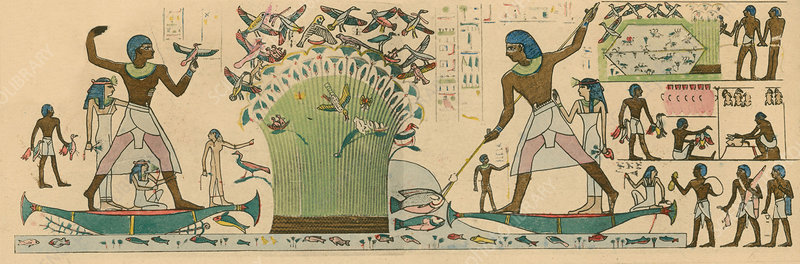 Ancient Egyptians hunting birds