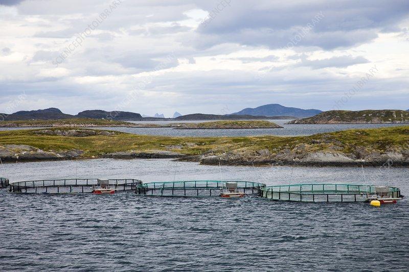 Fish farm, Norway