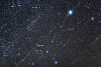 Sirius and Canis Major