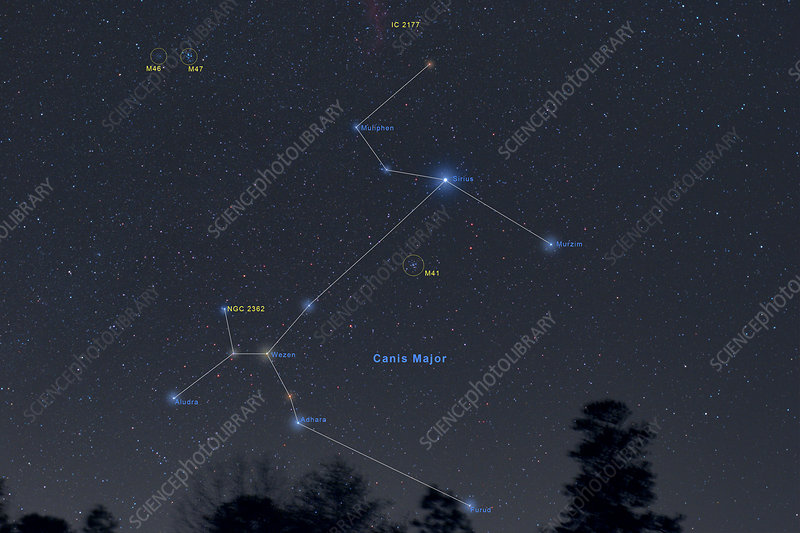 Canis Major Annotated