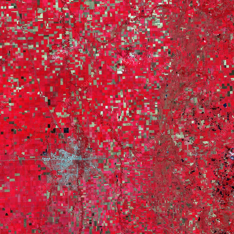 Farmland, Minnesota, USA, satellite image
