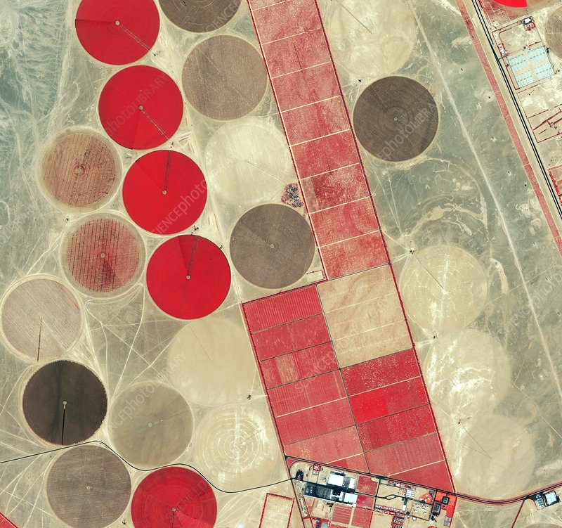 Tadco farm, Saudi Arabia, satellite image