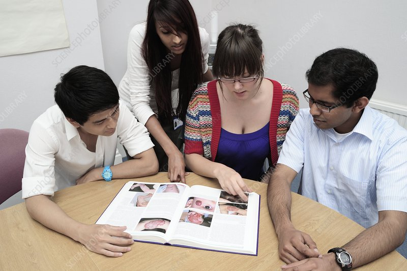 Medical students study a book