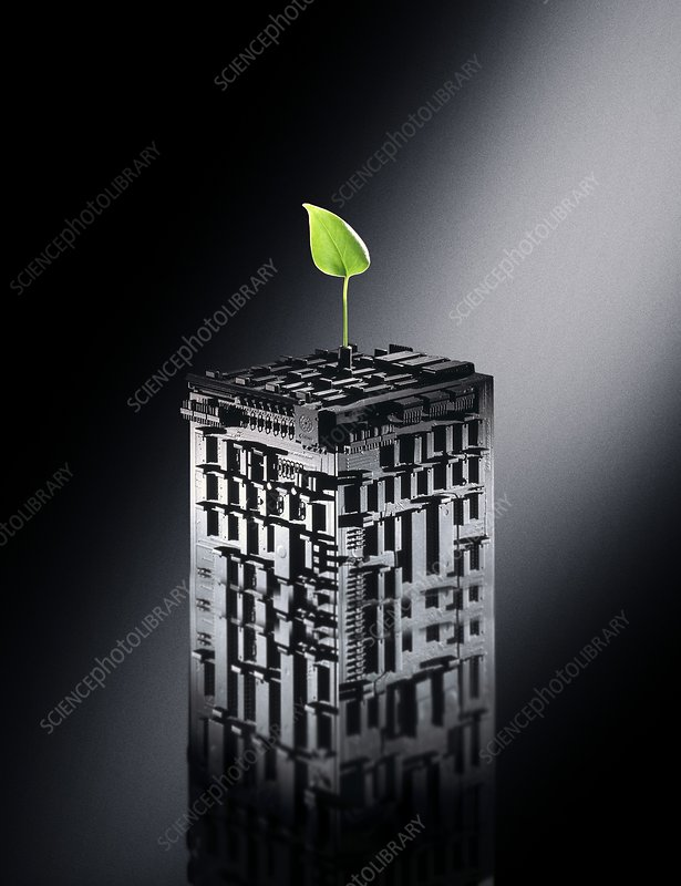 Plant biotechnology, conceptual image