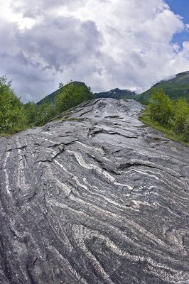 Folded gneiss