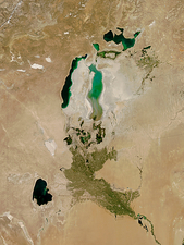 Aral Sea, satellite image, 2010