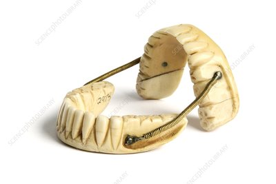 Ivory dentures with springs