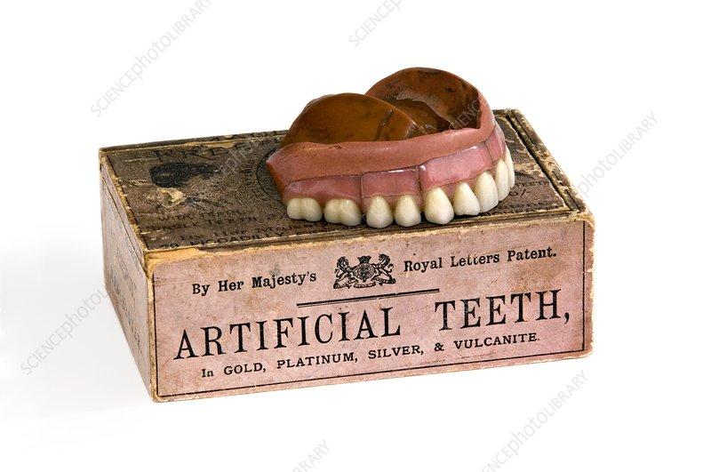 Vulcanite dentures with box, 1850