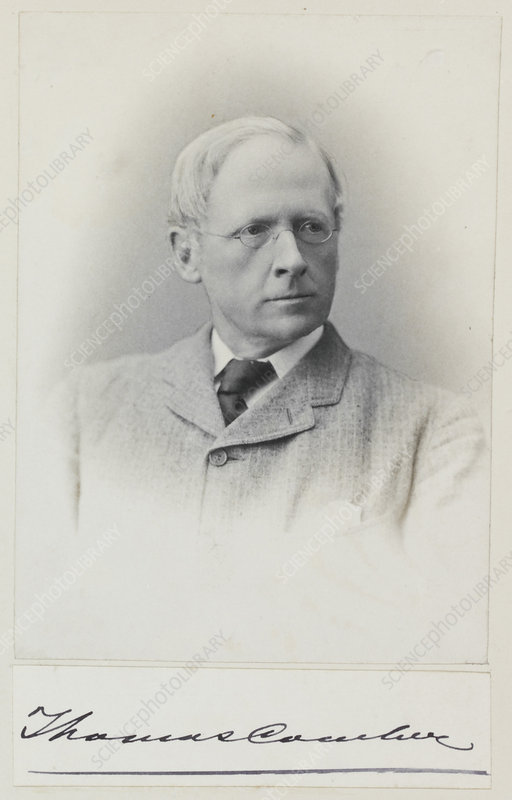 Thomas Comber, British botanist