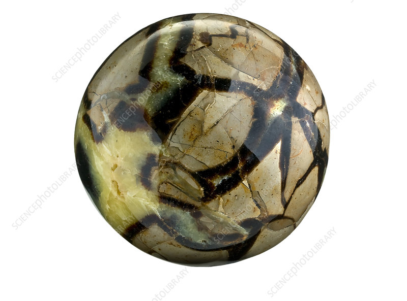 Septarian nodule polished stone