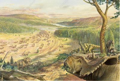 Pachyrhinosaurus Edmontosaurus dinosaurs