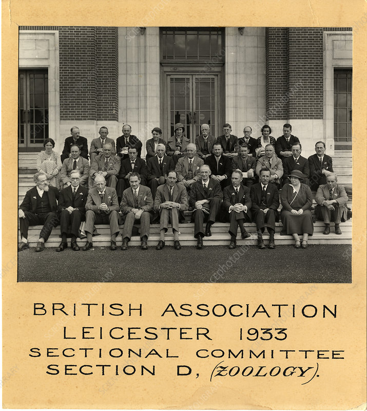 British Association Zoology section, 1933