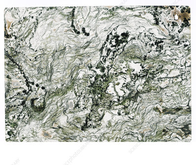 Moss agate marble pattern