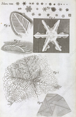 Frozen objects, 17th-century microscopy